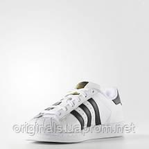 Кроссовки Superstar Adidas Originals женские C77153 , фото 2