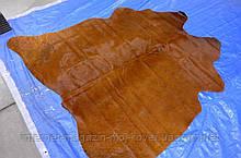 Однотонна маленька руда шкіра теляти на стіну