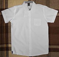 Рубашки белые с коротким рукавом