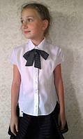 Блуза школьная с бантиком №1021 (р.128-152)