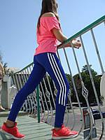 Спортивные брюки, лосины, эластик  синие Adidas