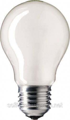 Лампа накаливания А55 40Вт E27 матовая  Philips (16001466)