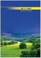 Книга учета 96 листов, твердая обложка, ламинированная, офсет, клетка. BuroMax