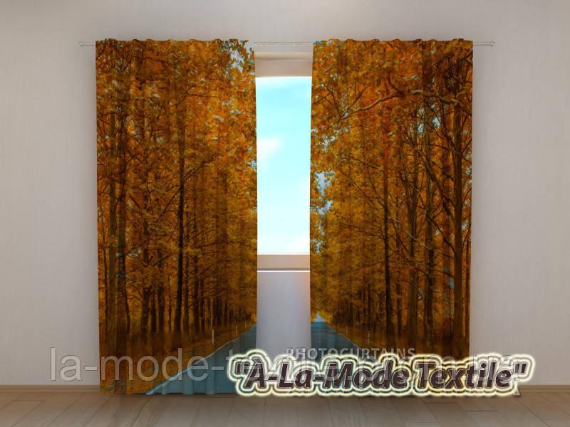 Фотошторы 3D Дорога в осень