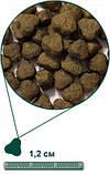 Sensitive корм для собак океаническая белая рыба и картофель 12кг, фото 2