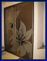 Двери шкафа-купе, фото 1
