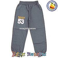 Серые спортивные брюки с манжетам Возраст: 6- 9 лет (4584-3)