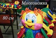 """Развивающая игрушка """"Сороконожка"""", фото 1"""