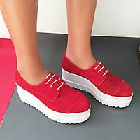 Стильные женские ботиночки из натурального турецкого замша от Troisrois