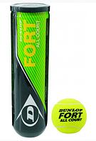 Теннисные мячи Dunlop Fort All Court 4 мяча