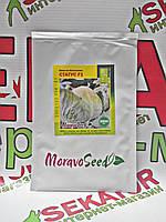 Капуста белокочанная Статус F1, 2500 семян Moravoseeds (Моравосид), Чехия