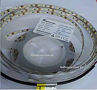 Светодиодная лента RISHANG 2835/120 IP33 8,4Вт IP33 Холодный белый (R08C0TA)