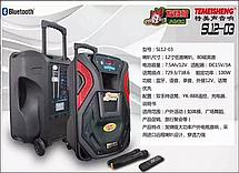 Комбоусилитель Temeisheng SL12-03, фото 2
