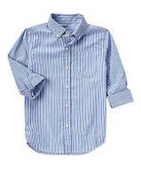 Рубашка в голубую полоску с длинным рукавом Хлопок-поплин 100% Crazy8 (США)