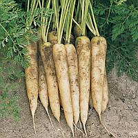Морковь White Satin