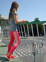 Спортивные брюки, лосины Adidas розовые эластик
