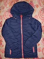 Курточки демисезонные на девочек, Венгрия, 146 см