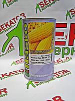 Кукуруза сахарная Nasko Zea 80/24 F1, 5500 семян, Nasko  Nasko (Наско), Молдавия