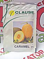 Семена дыни Карамель F1, 1000 семян, Clause  (Клоз),Франция