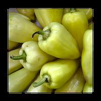 Семена перца Ами 5000 семян Semo