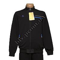 Трикотажный мужской батальный спортивный костюм тм. Boulevard  FZ1657G