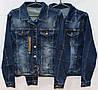 Джинсовая курточка большие размеры Cracpot 6244-B