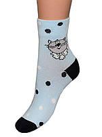 Детские носки для новорожденных Легка хода Кот