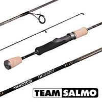 Спиннинг Team Salmo POWDER 2-8g 6.5ft
