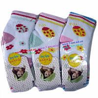 Носки для младенцев Vit0072a махра 12 шт (0-12 мес)