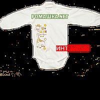 Детский боди с длинным рукавом и царапками р. 56 демисезонный ткань ИНТЕРЛОК 100% хлопок ТМ Алекс 3175 Бежевый