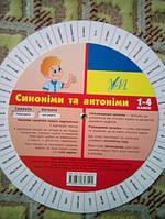 Українська мова, синоніми та антоніми 1-4 клас.