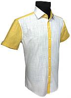 Мужская рубашка с коротким рукавом №12.100