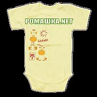 Детский боди-футболка р. 68 ткань КУЛИР 100% тонкий хлопок ТМ Алекс 3087 Желтый1