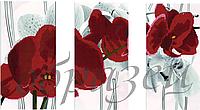 Схема для вышивания бисером . Красные орхидеи КМРТ 1008