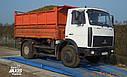 Автомобильные весы Axis 30т-6м ФЕРМЕР, фото 3