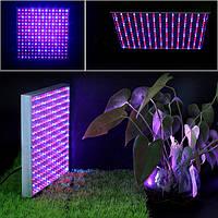 Светодиодная фито-панель для освещения растений 20W (2 спектра: синий/красный), фото 1