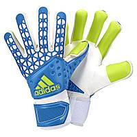 Вратарские перчатки Adidas Ace Zones Pro Goal Keeper Glove AH7804