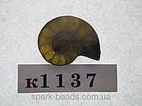 Натуральный камень к1037 (9). АММОНИТ