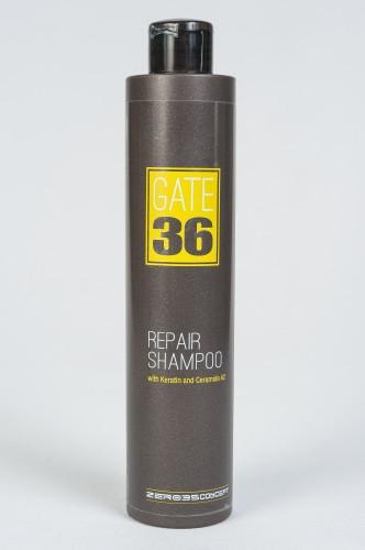 GATE 36 Emmebi Repair shampoo Восстанавливающий шампунь, 250 ml Эмеби