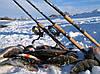 Ловля на спиннинг перед ледоставом - часть 1