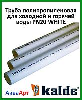 Труба полипропиленовая для холодной и горячей воды 40 PN20 WHITE