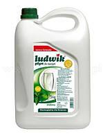 Средство для мытья посуды Ludwik (Людвик) 5 л (мята)