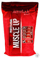 Протеин  Muscle UP Professional (700 g )