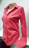 Классическая женская рубашка с длинным рукавом,на пуговицах,ткань натуральный коттон хлопок, фото 2