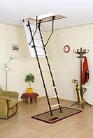 Комбинированная трехсекционная чердачная лестница Oman Stallux 3 (ST3) (120x70)