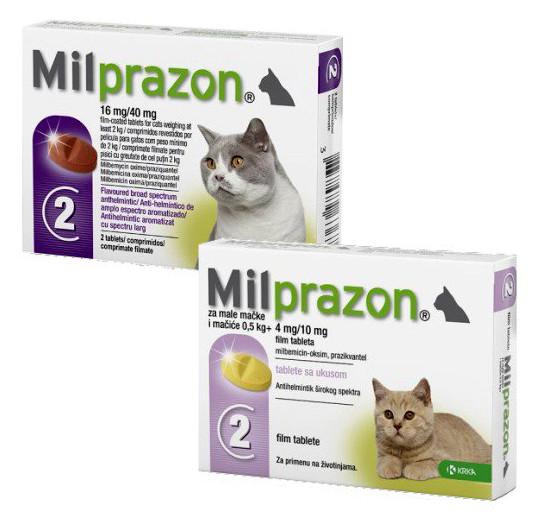 Таблетки от глистов для котят и кошек KRKA Милпразон