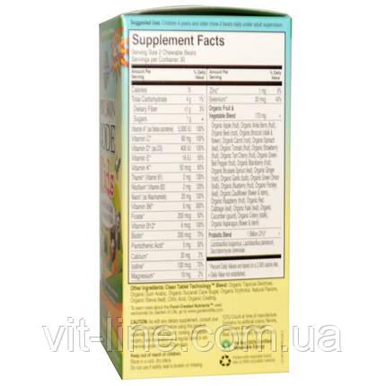 Garden of Life, Vitamin Code, для детей, жевательные цельнопищевые мультивитамины для детей, вишня,, фото 2