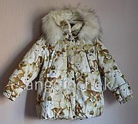 Куртка Lenne Emily 16331-1000 116р принт мишки