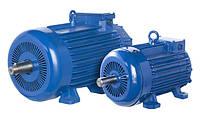 Крановый электродвигатель 4 MTN 132 LA6