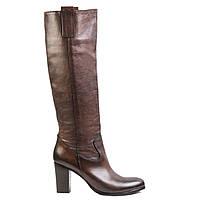 Сапоги женские кожаные Venezia 8064 кор.